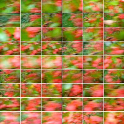 CLAUDE_JOUANY_PHOTO_EXPLORATION_VERS-LE-ROUGE
